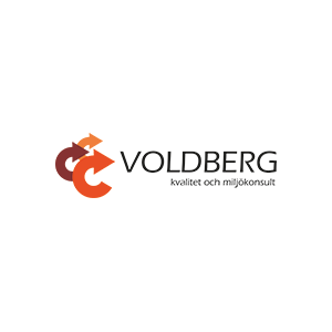 voldberg.png